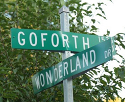 Go Forth and Wonderland Streets